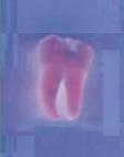 Zahnarzt Dachau - Dr. Gitt